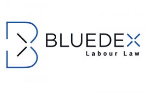 Bluedex_Logos_Karussel